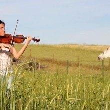 Violin Cover Zafra - Extremadura